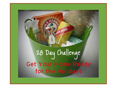 28 Day Holiday Challenge