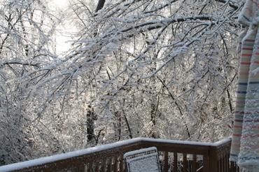 Ice_storm_2006_011_1